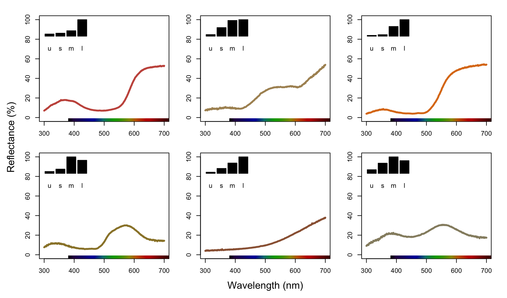 Plots of species mean reflectance curves with corresponding relative usml cone stimulations (insets).